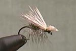 Fly Tying:Elk Hair Caddis