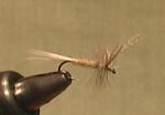 Fly Tying:Light Cahill